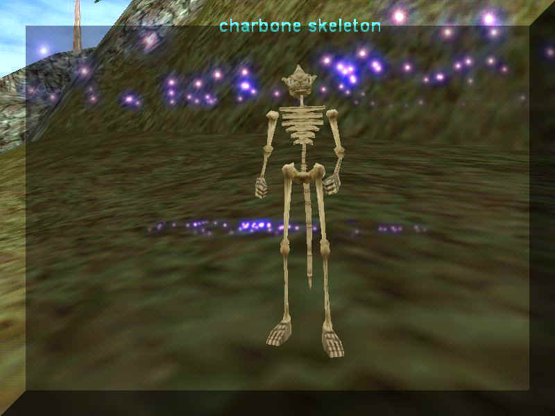 May 12, 2000: Windmills, skeletons and clerics, Oh My