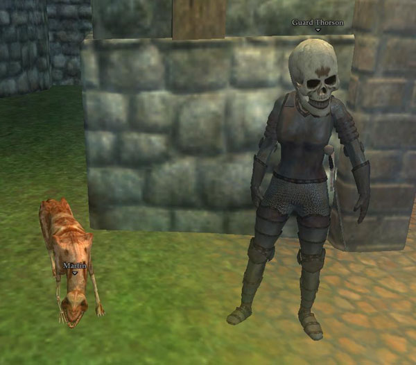 IMAGE- EQ2 guard and guard dog