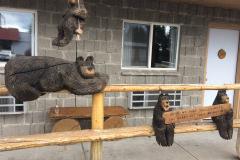 Bears...
