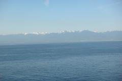 cruise_2011_22