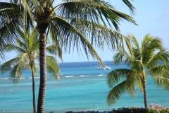 hawaii2012_113