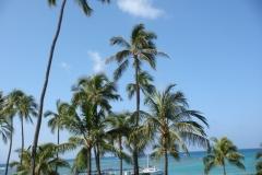hawaii2012_59