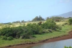hawaii2012_94