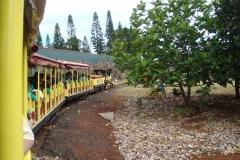 hawaii2012_95