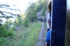 train2011june_11