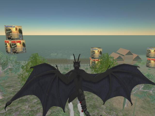 IMAGE: a view from above my Second Life property