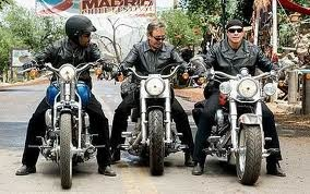 Midlife hog riders