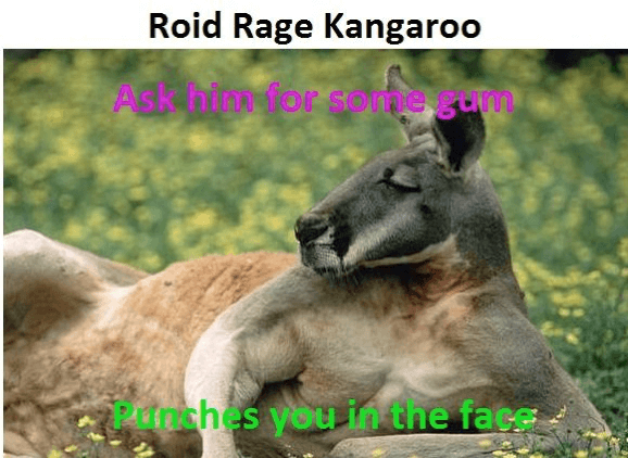 Roid roo- picture also not accurate